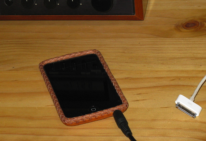 Leather case for iPod touch, February 16, 2009