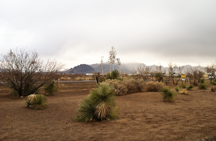 After the Storm, LoW-HI RV Ranch, Deming NM, January 24, 2012