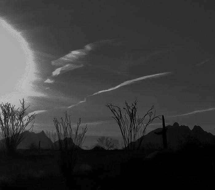 Ocatillo Sunrise, Plomosa Road, Quartzsite AZ, January 29, 2012