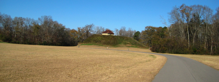 Moundville Archaeological Site, January 2, 2008