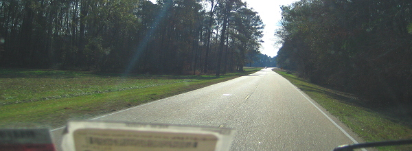 Through a dirty windshield at 50 mph, Natchez Trace Parkway, Southern Mississippi, January 4, 2008