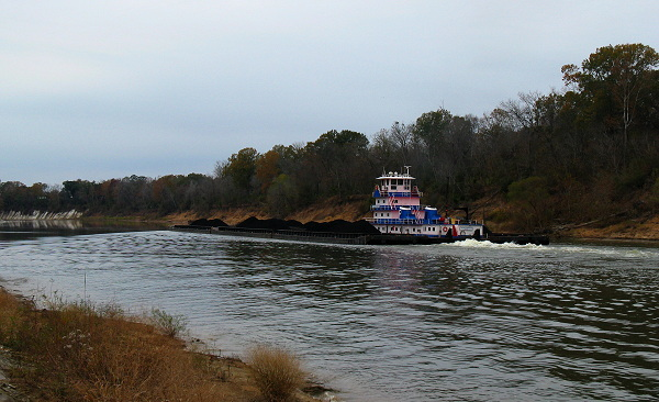 Towboat Thelma Parker II working on the Tombigbee River, Nov 23, 2008.
