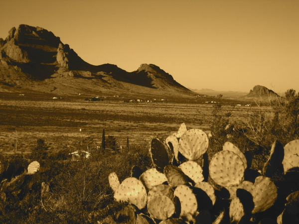 Valley view in sepia, Rockhound State Park, Deming NM, February 20, 2008