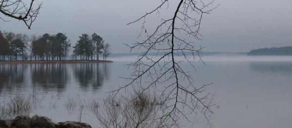 Okatibbee Mist, December 15, 2008, Twiltley Branch Campground, Collinsville MS
