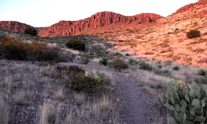 Sunset on the trail, Rockhound State Park, Deming NM, February 9, 2009