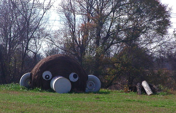 Haybale figure at Jim Bird's Acta Non Verba, Forkland AL, December 26, 2007